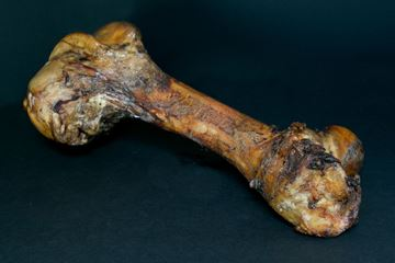 Picture of Smoked Beef Femur Bone